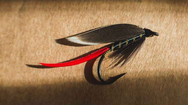 Feathered Streamers
