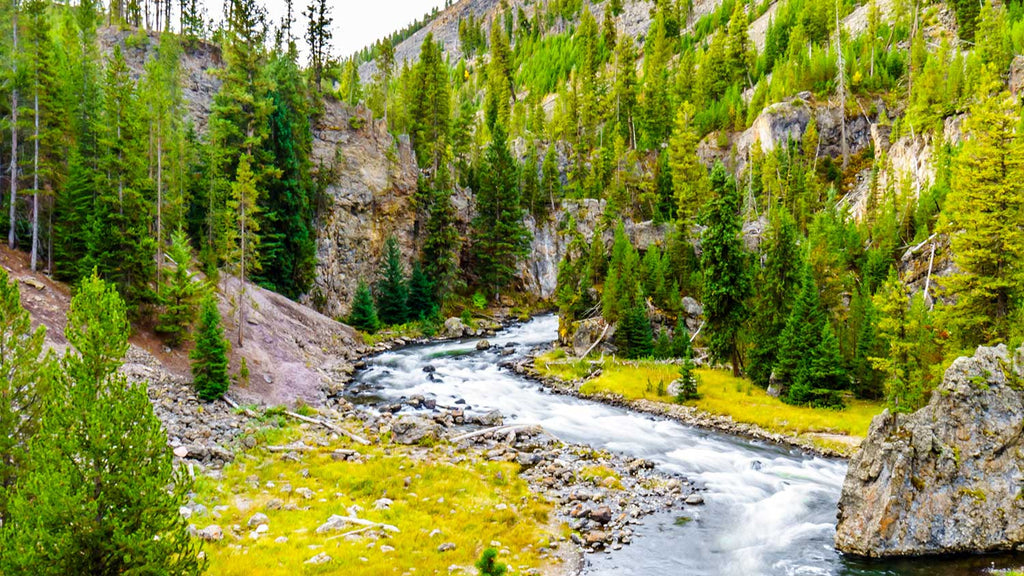 Fire Hole River Wyoming