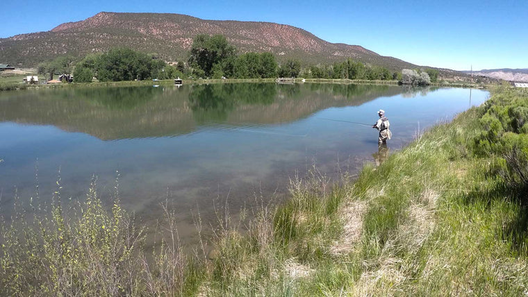 Fly Fishing for Trout in Still Water