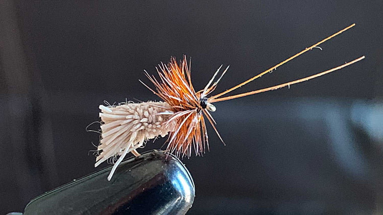 Goddard Caddis - Best Dry Fly For Fishing on Lakes for Trout