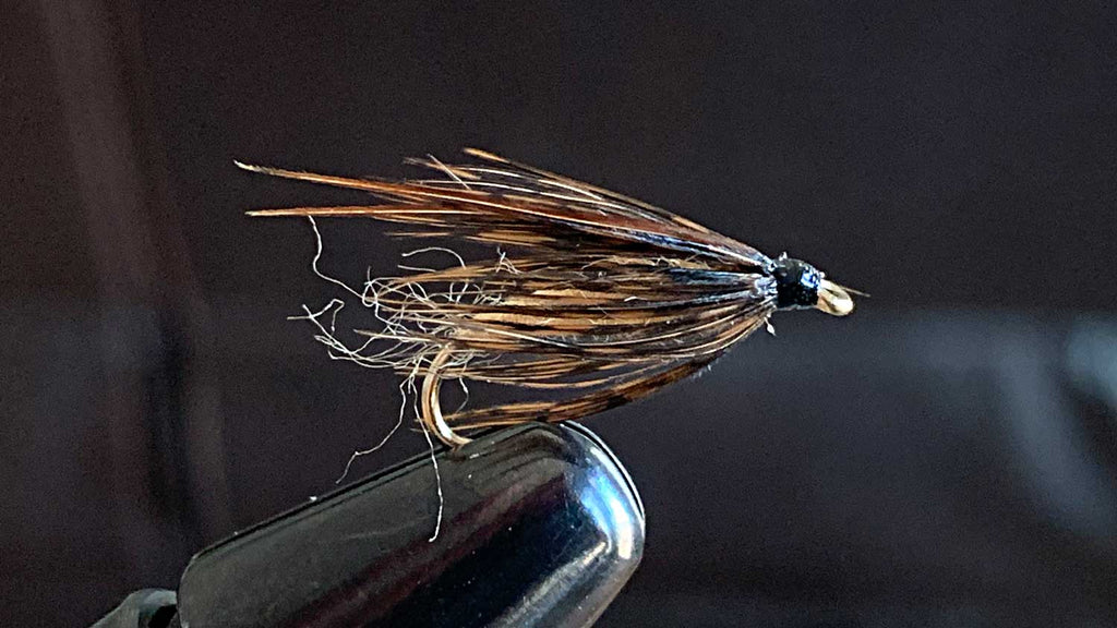 Graphic Caddis - Fly Fishing Flies