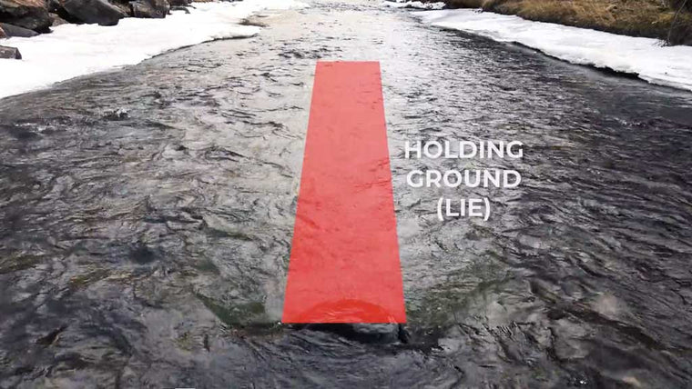 Holding Grounds