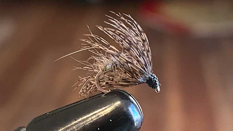 Soft hackle fly fishing flies