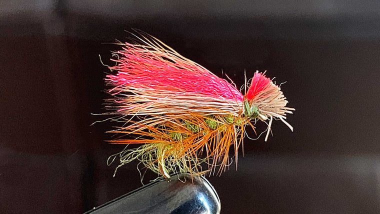 Hot Wing Caddis - Best Fly Fishing Flies for Lakes with Trout