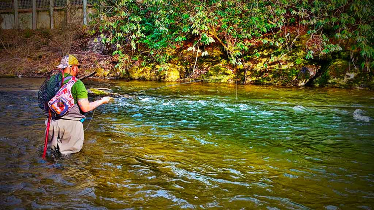 Man Fishing in Georgia for Large Trout