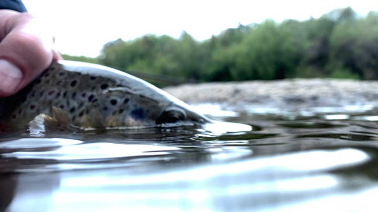How to read the water fly fishing