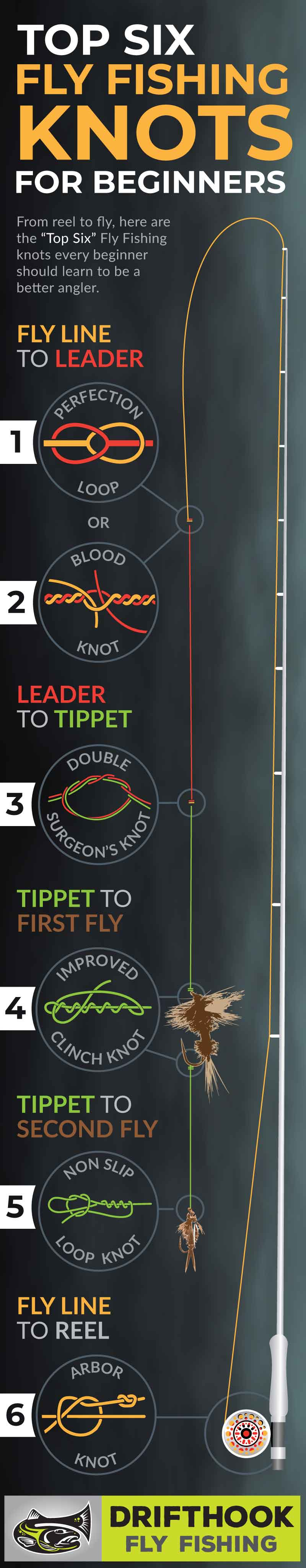 Top Six Fly Fishing Knots for Beginners
