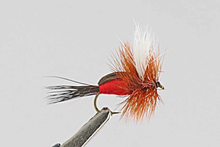 Humpy Royal - Best Fly For August