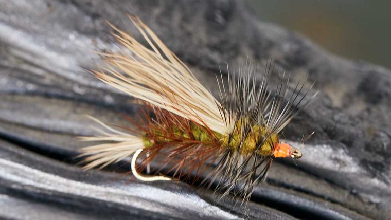 Kaufman Stimulator Dry Fly Pattern for Fly Fishing
