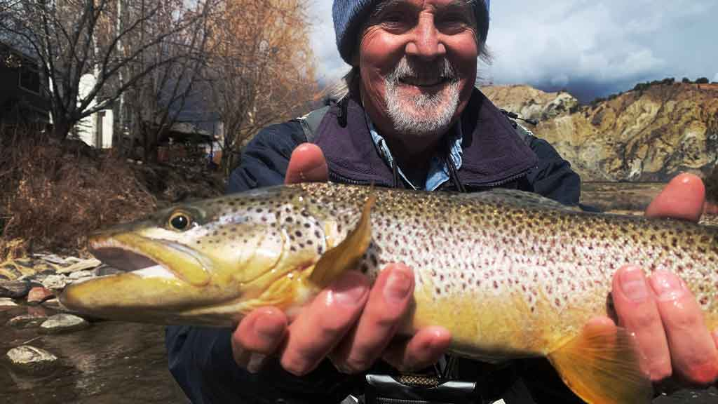 Large Brown Caught in Fast Moving Water