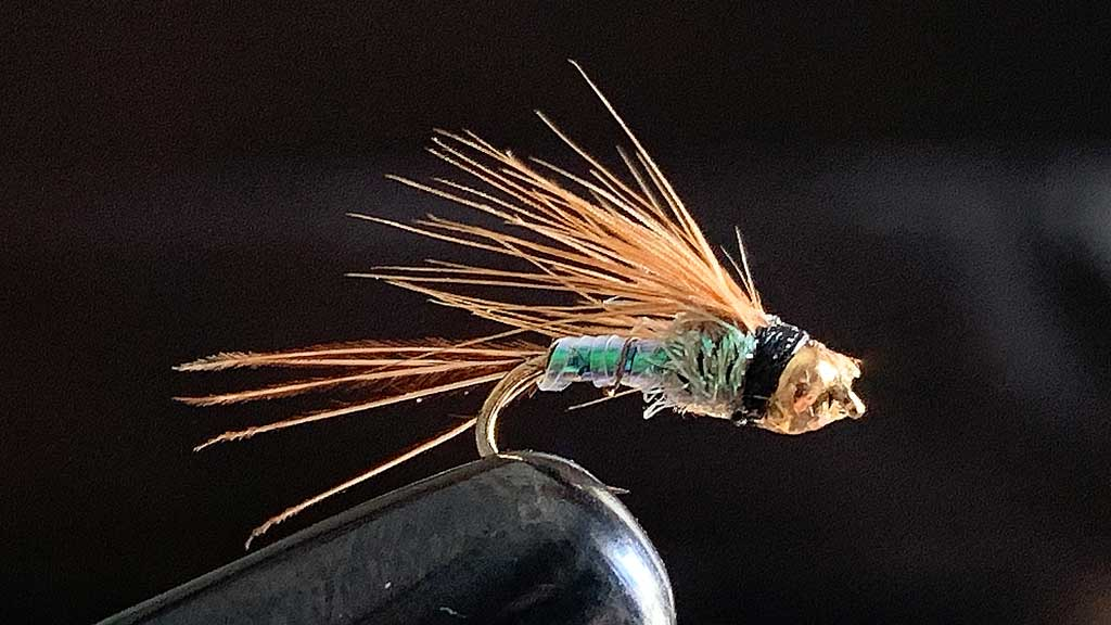 Nymphing Fly for Drop Shot Rig