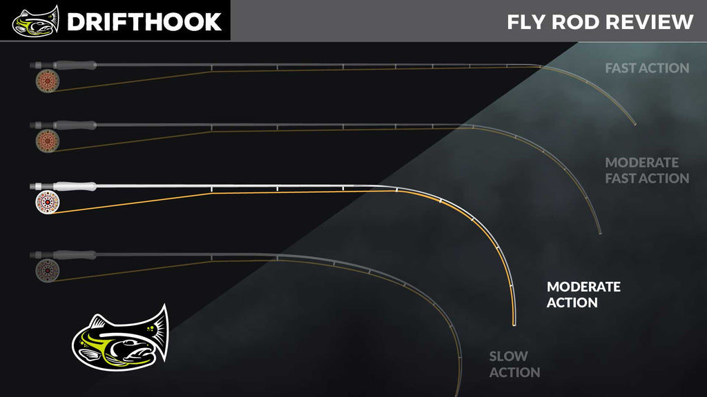 Moderate Action Fly Rod Infographic Drifthook Fly Fishing