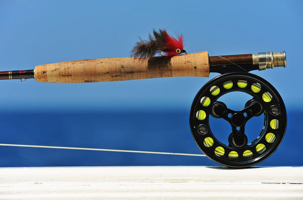 Salt Water Fly on Fly Reel