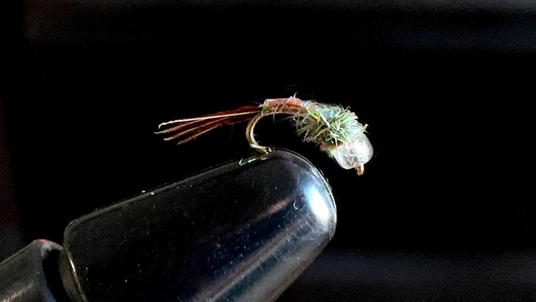 Rainbow Warrior - Best Fly Fishing Flies for Trout