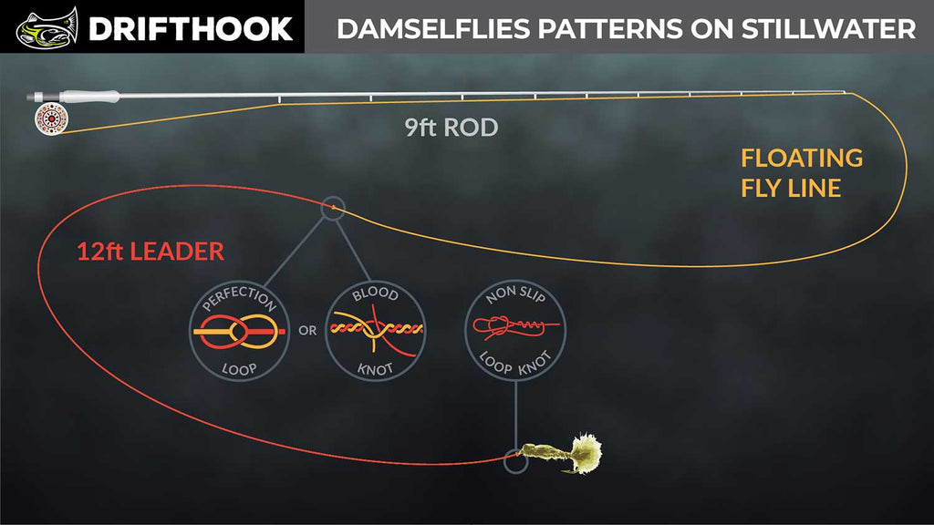 Damsel Fly Fly line setup for trout