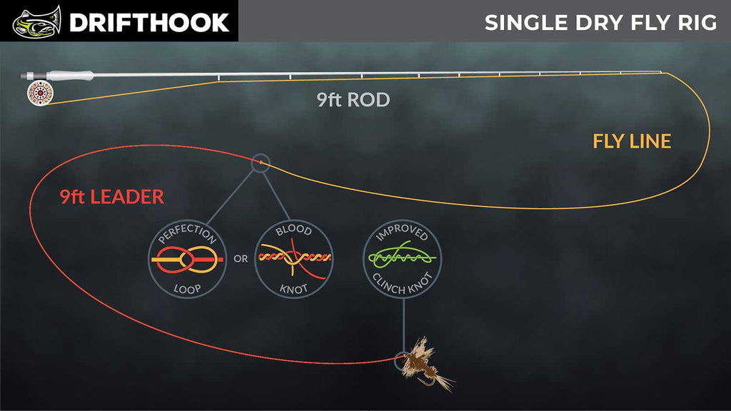 Single Dry Fly line setup for trout