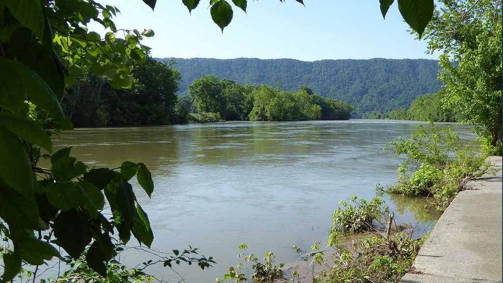 South Holston River Tennessee