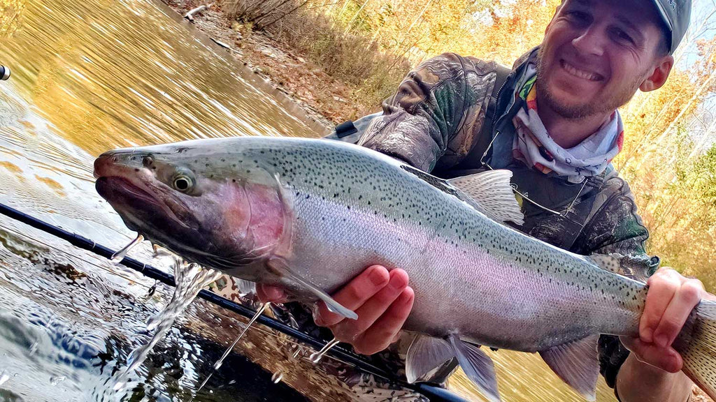 Large Trout - Tom