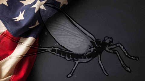 USA Flag and Mayfly