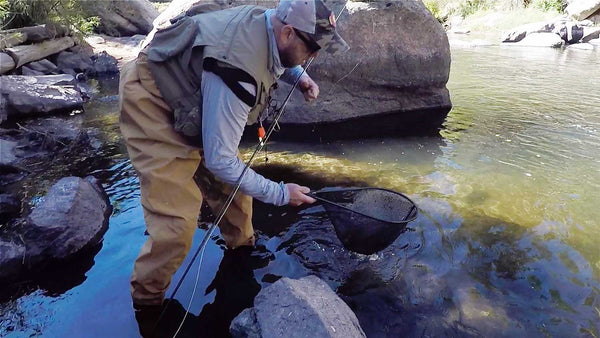 Man Fly Fishing with Waders