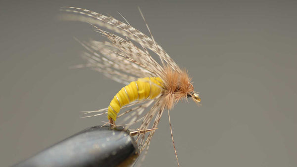 Wet Fly on Hook for Fly Fishing