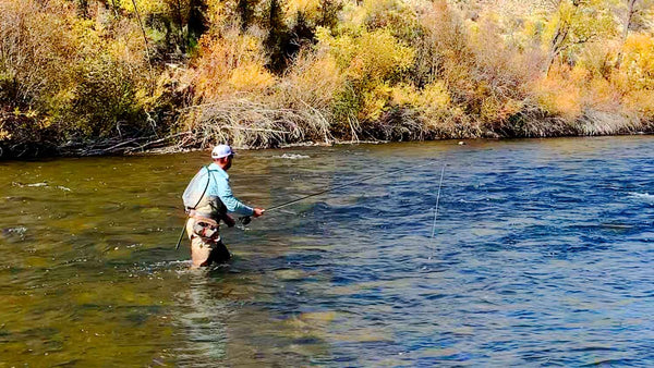 Matthew Bernhardt Fly Fishing in Gunnison River