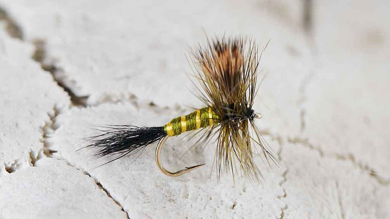 Green Drake Dry Fly - Best Fly Fishing Flies for June