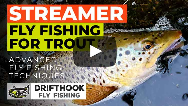 Streamer Fly Fishing for Trout Video Link