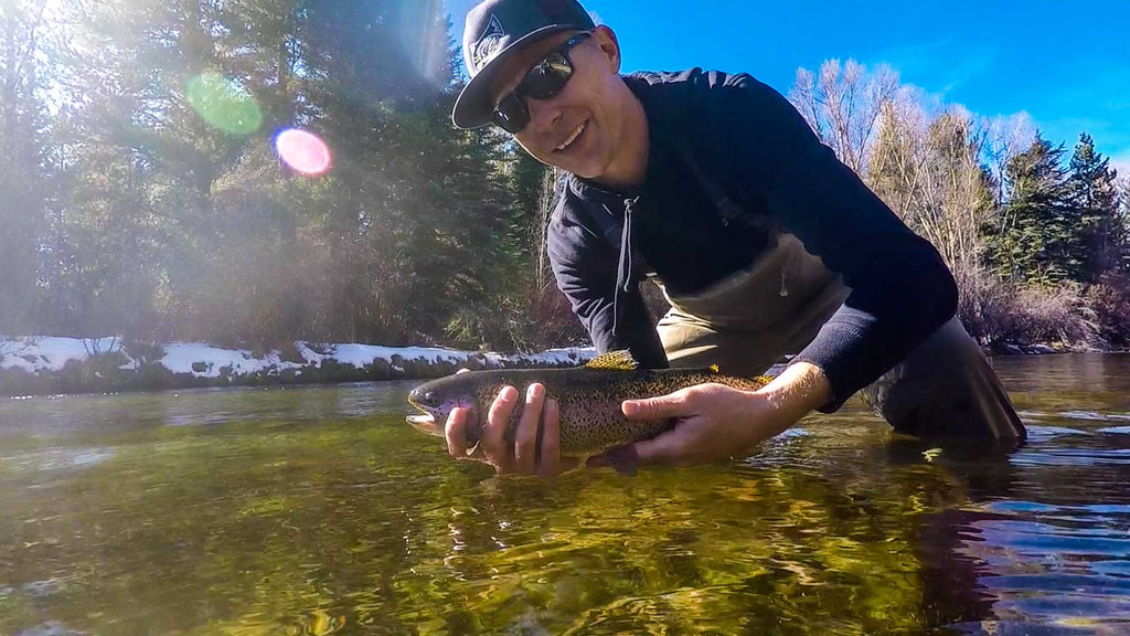 Man Catching Large Rainbow Trout