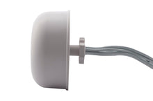 Load image into Gallery viewer, 2.4/5 GHz Dual-band 3/4 DBi 6 Element Indoor/Outdoor Omni Antenna for WiFi6 802.11ax