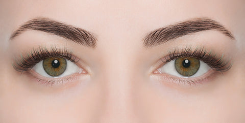 Eyebrow/Eye Lash Tinting