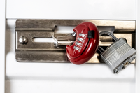 DaVinci Lock – Red - 10 Pack