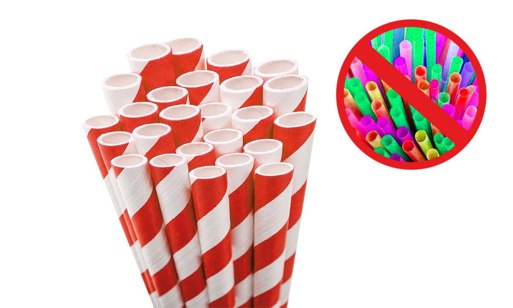paper straws  - alternative to plastic