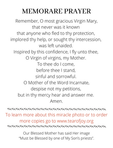 Our Lady of the Tear of Joy Prayer Cards - English
