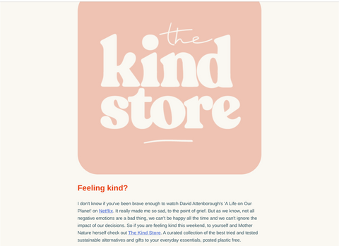 screenshot of the clementine newsletter featuring the kind store.
