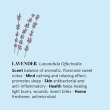 Load image into Gallery viewer, The Nature of Things All Products Lavender Essential Oil 12ml