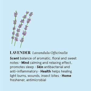 The Nature of Things All Products Lavender Essential Oil 12ml