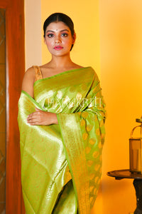 PISTACHIO GREEN BANARASI SAREE WITH ALL OVER ZARI WEAVING