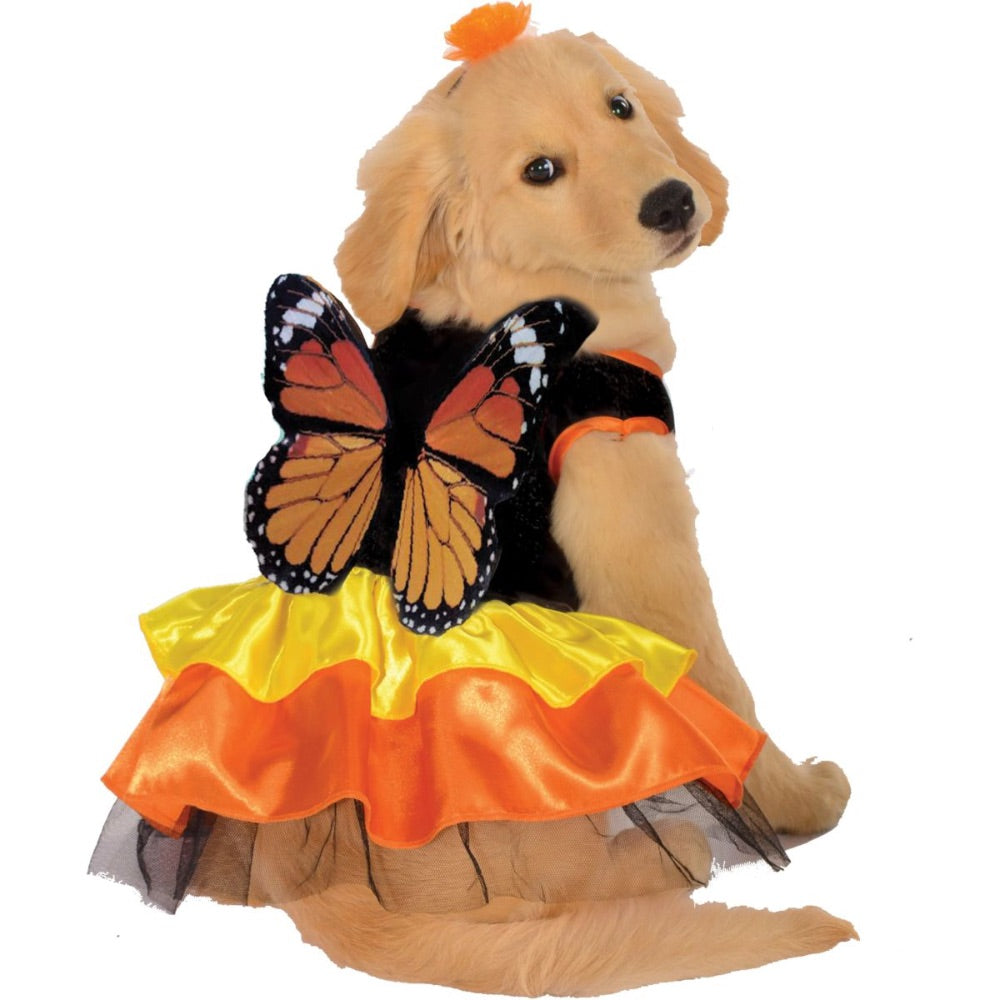 Beautiful Butterfly Pet Costume Dress