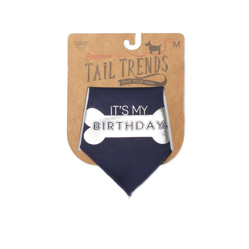 Tail Trends IT'S MY BIRTHDAY- BONE- SILVER Bandana