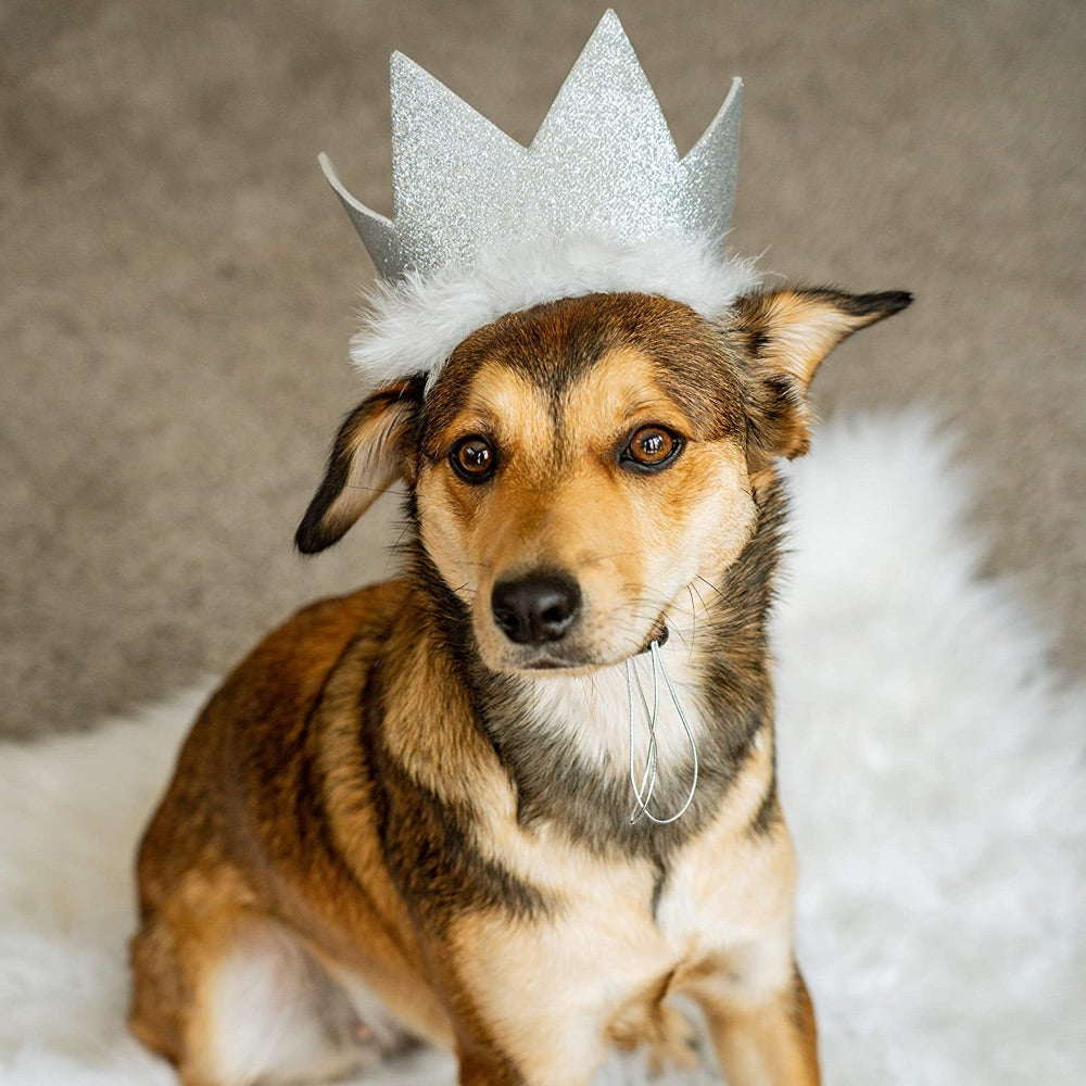 Huxley & Kent Party Crown