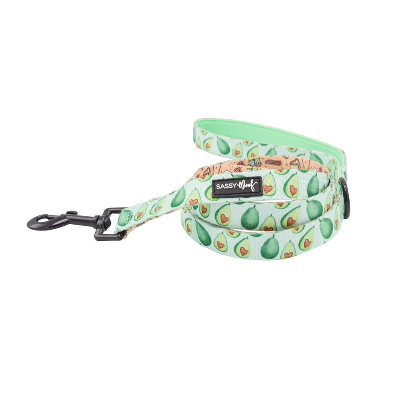 Sassy Woof LEASH - HEARTY BRUNCH