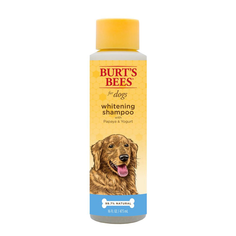 Burt's Bees Whitening Shampoo with Papaya and Yogurt, 16 Ounces