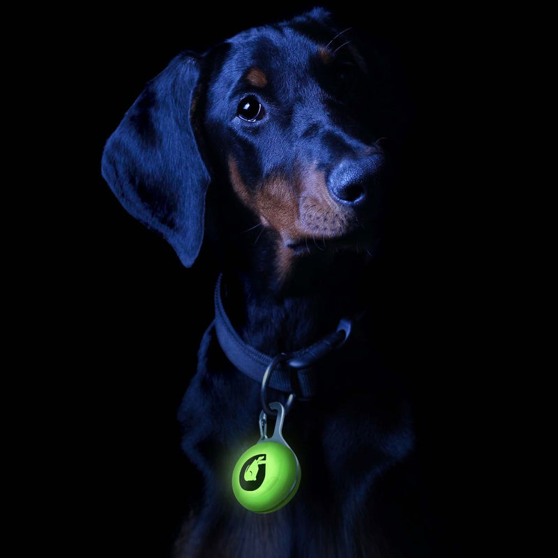 Green Gruff Collar Light