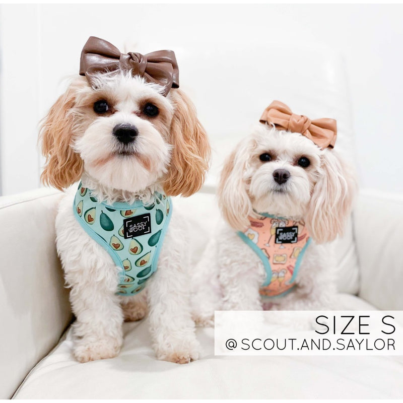 Sassy Woof REVERSIBLE HARNESS - HEARTY BRUNCH