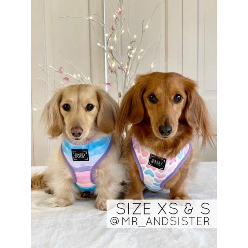 Sassy Woof REVERSIBLE HARNESS - LOVE ACTUALLY