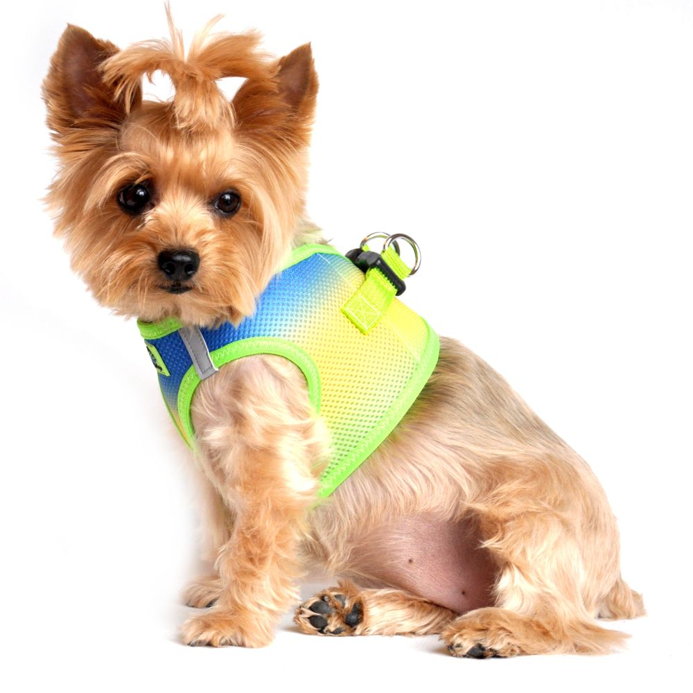 Doggie Design American River Choke Free Dog Harness Ombre Collection - Cobalt Sport