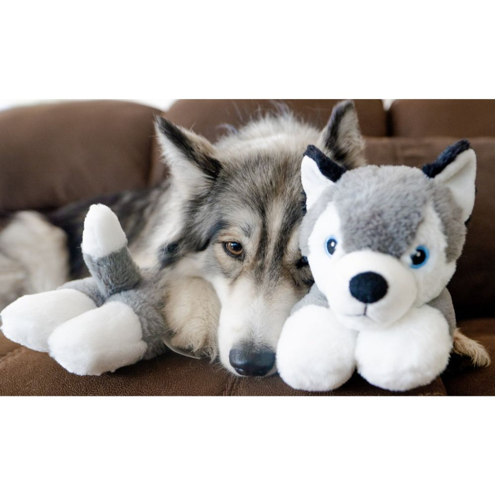 The Dog Pillow Company- WILLOW the Husky Curved Dog Pillow