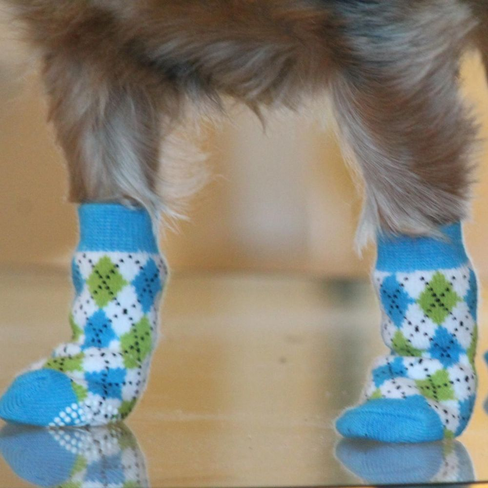 Doggie Design Non-Skid Dog Socks - Blue and Green Argyle