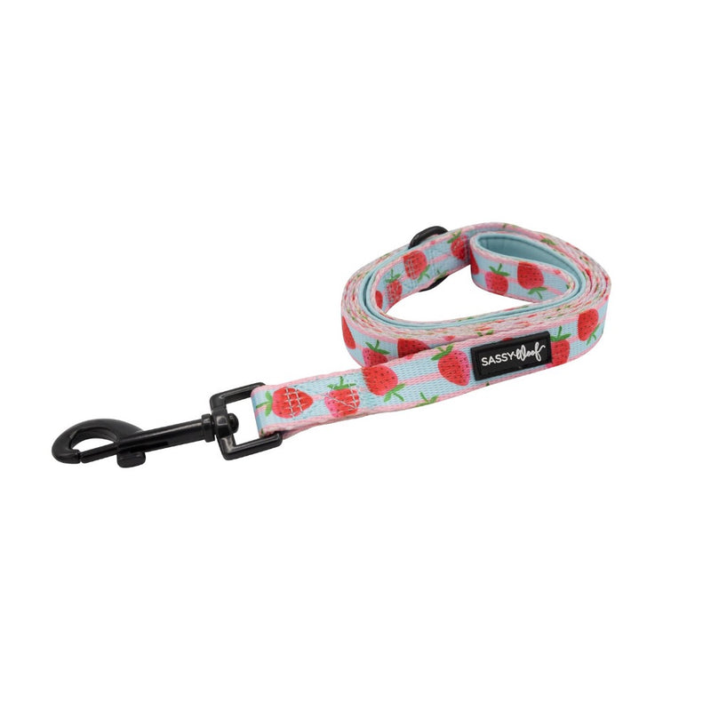 Sassy Woof LEASH - I WOOF YOU BERRY MUCH